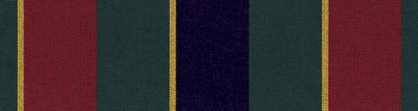 4901-0000 Captain Navy/Forest Green/Yellow/Red Regimental
